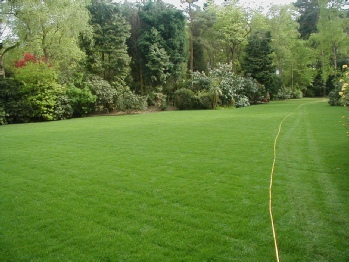 Garden turf Wallingford