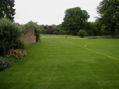 Finished lawn