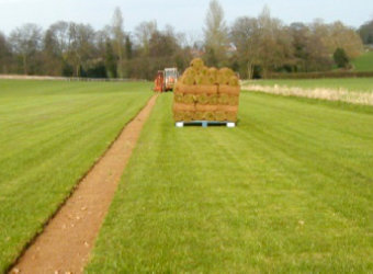 Supplying and laying grass turf rolls