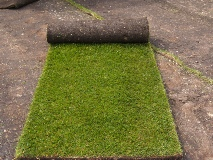 Lawn turf Yateley