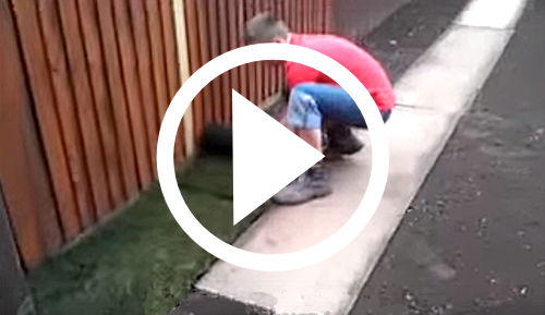 Laying turf video